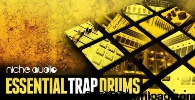 Niche Audio Essential Trap Drums Ableton 9.6+