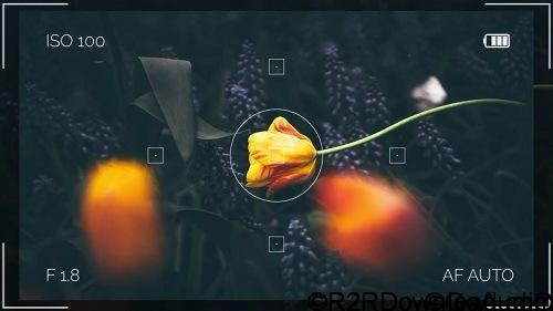 SUMMER TRAVEL CAMERA MEMORIES AFTER EFFECTS TEMPLATE (MOTION ARRAY) Free Download