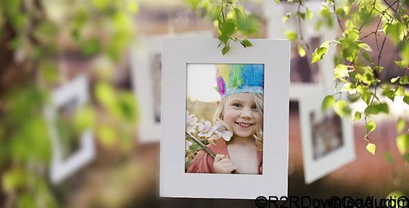 VideoHive Photo Gallery on a Sunny Afternoon Free Download