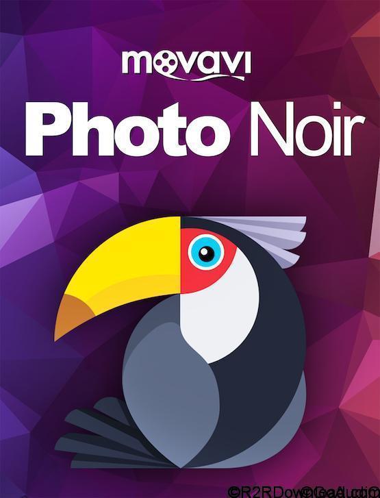Movavi Photo Noir 1.0.1 Free Download