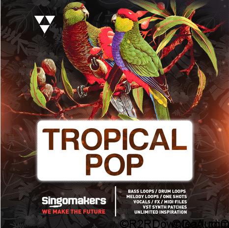 Singomakers Tropical Pop MULTiFORMAT