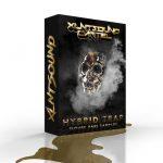 XLNT Sound Cartel (Hybrid Trap/Future Bass Sample Pack + Serum Presets)