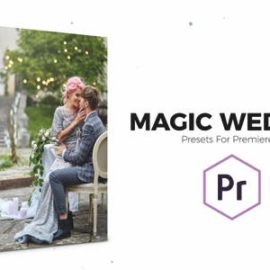 VideoHive Magic Wedding Color Correction Presets for Premiere Pro 23449210 Download