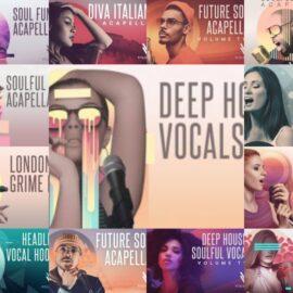 Vital Vocals Sample Pack Bundle