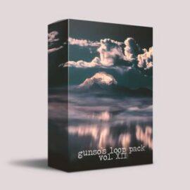 Gunso's Loop Pack Vol. XII WAV