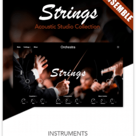 Muze Strings Ensemble KONTAKT