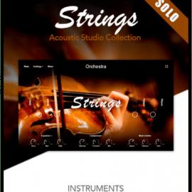 Muze Strings Solo KONTAKT