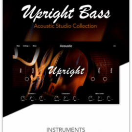 Muze Upright Bass KONTAKT