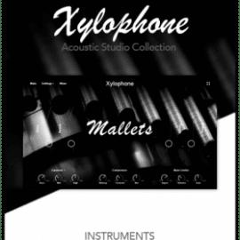 Muze Xylophone KONTAKT
