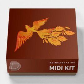 DrumVault – Reincarnation (Midi Kit)
