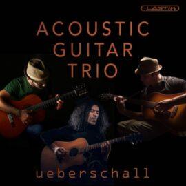 Ueberschall Acoustic Guitar Trio ELASTIK