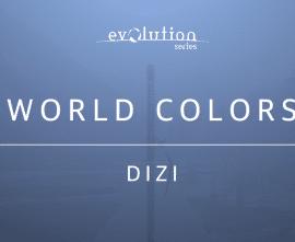 Evolution Series World Colors Dizi v1.0 KONTAKT